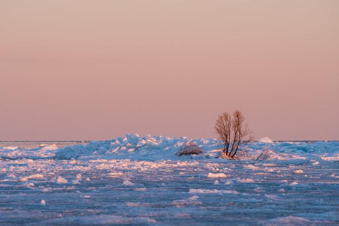Capturing Winter: A Michigan Challenge