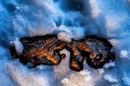 Aging Under the Snow