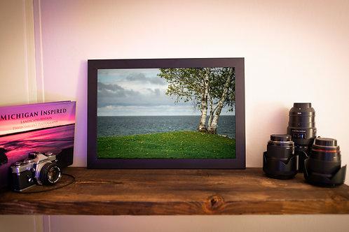 """12x18 Loose Print: """"Birch Trees and Lake Michigan"""""""