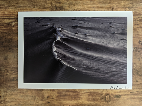 Black Sand at Whitefish Point - 13x19 loose print