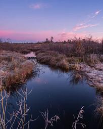 Creek's Frost