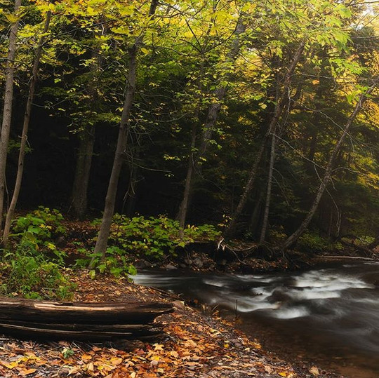 Autumn Riverbend