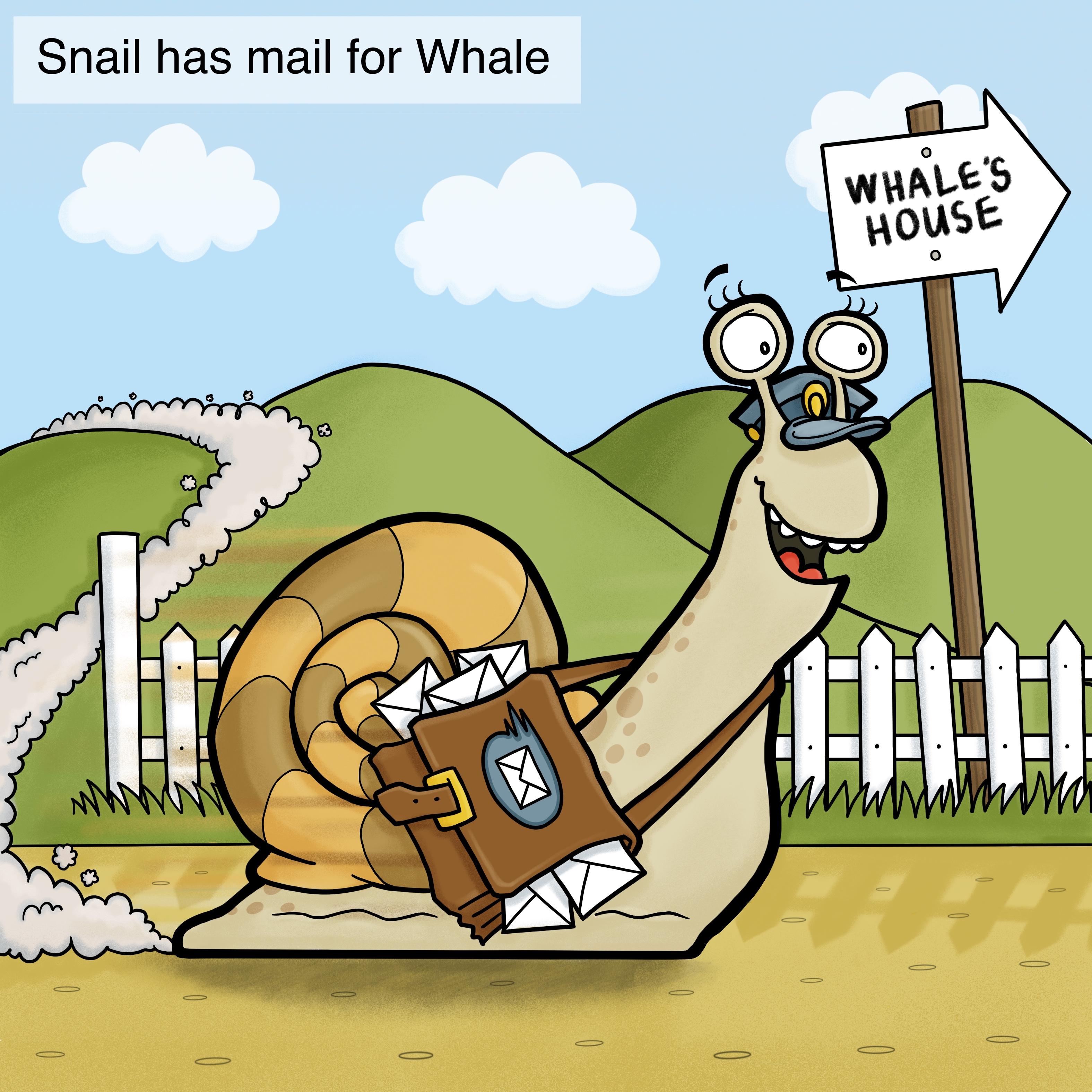Snail Arrives