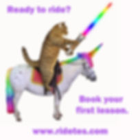 Cat on Unicorn Ad.jpg