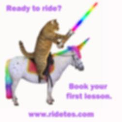 Cat on Unicorn Ad.jpg
