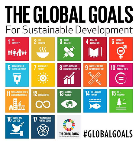 global-goals-logo_edited.jpg