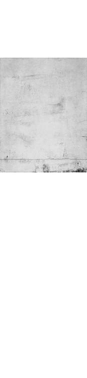 Plate 9 border.jpg