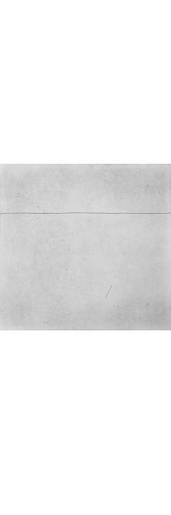 Plate 8 border.jpg