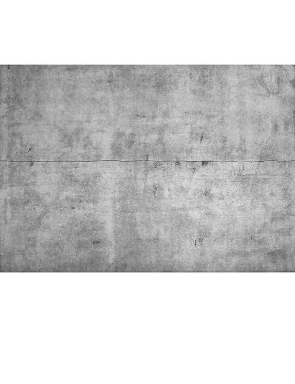 Plate 2 border.jpg
