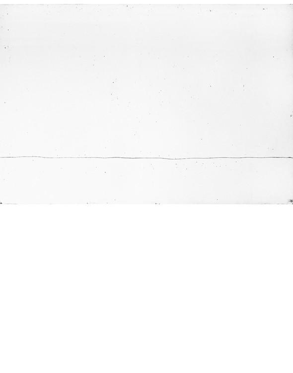 Plate 1 border.jpg
