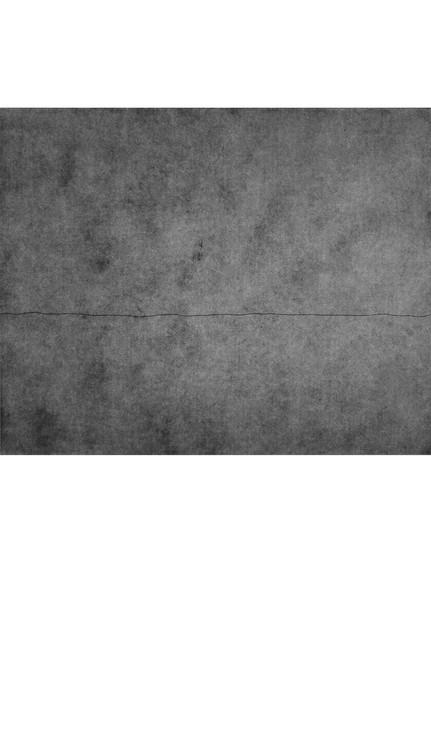 Plate 3 border.jpg