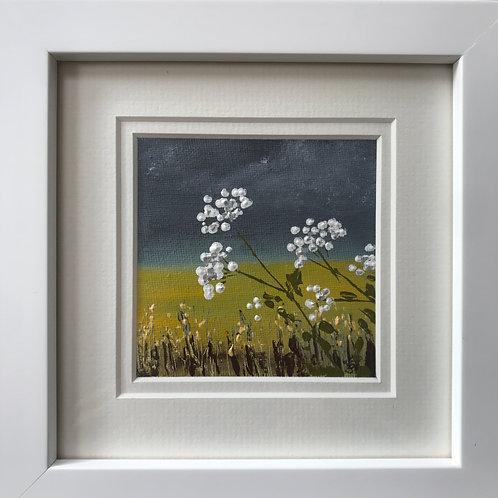Mini Framed Original Acrylic painting - Cow Parsley ii