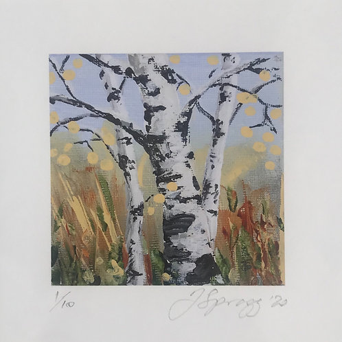 'Mini' Limited Edition Print - 'Silver Birch on Blue'