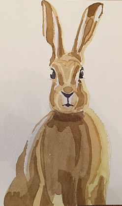 Escape2Art, watercolour staring hare