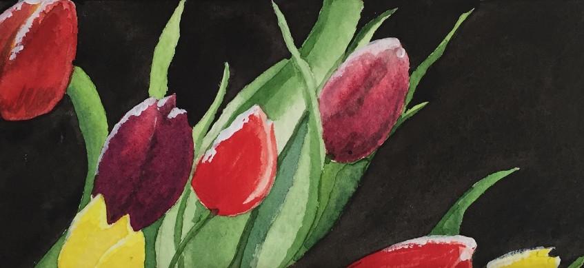 escape2art tulips