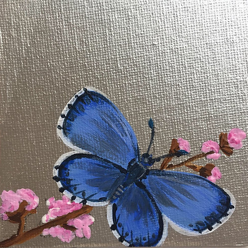 Small Framed Original Acrylic painting - Butterfly series - Common Blue