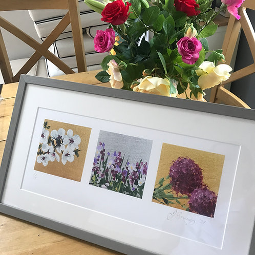 Framed Limited Edition Print - Bumble Bee Triptych
