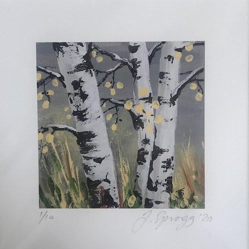 'Mini' Limited Edition Print - 'Silver Birch on Grey'