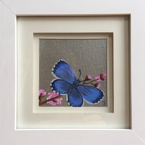 Mini Framed Original Acrylic painting - Butterfly series - Common Blue