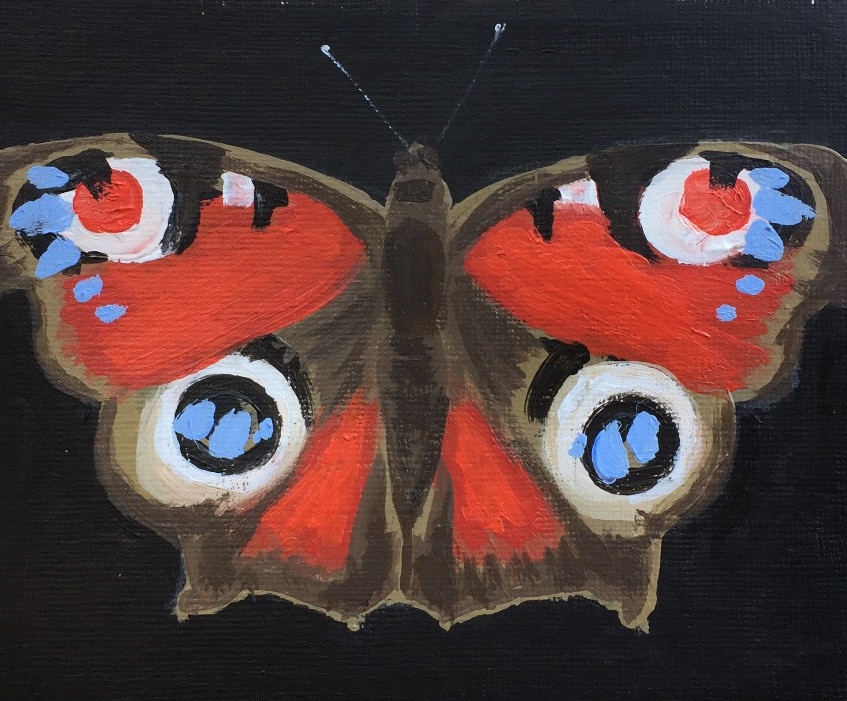 Escape2Art Red Admiral butterfly