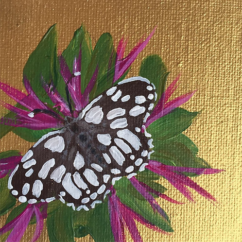 Small Framed Original Acrylic painting - Butterfly series - Checkered Skipper