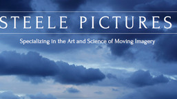 Steele Pictures New Website!