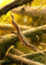 1510_mesosaurus_abelov2014.jpg
