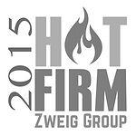 HotFirm-2015-ZW-300x300.jpg