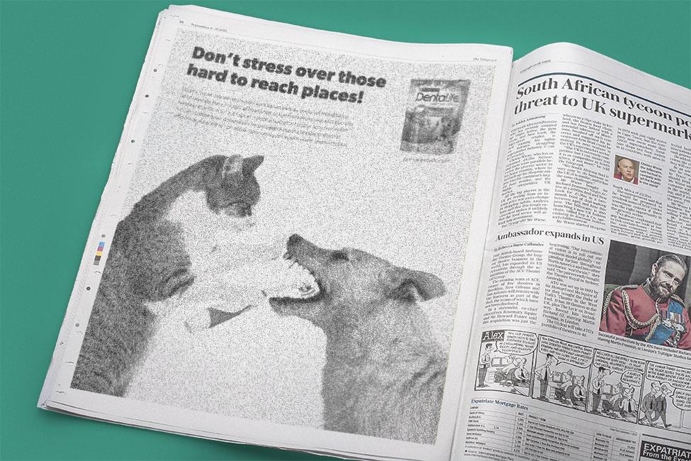 DentaLife Newspaper Ad