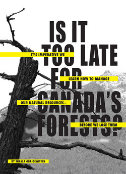 Canada's Forests Title