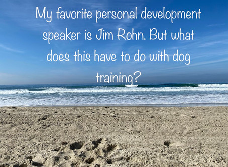 My favorite personal development speaker is Jim Rohn. Why does this matter in Dog Training?