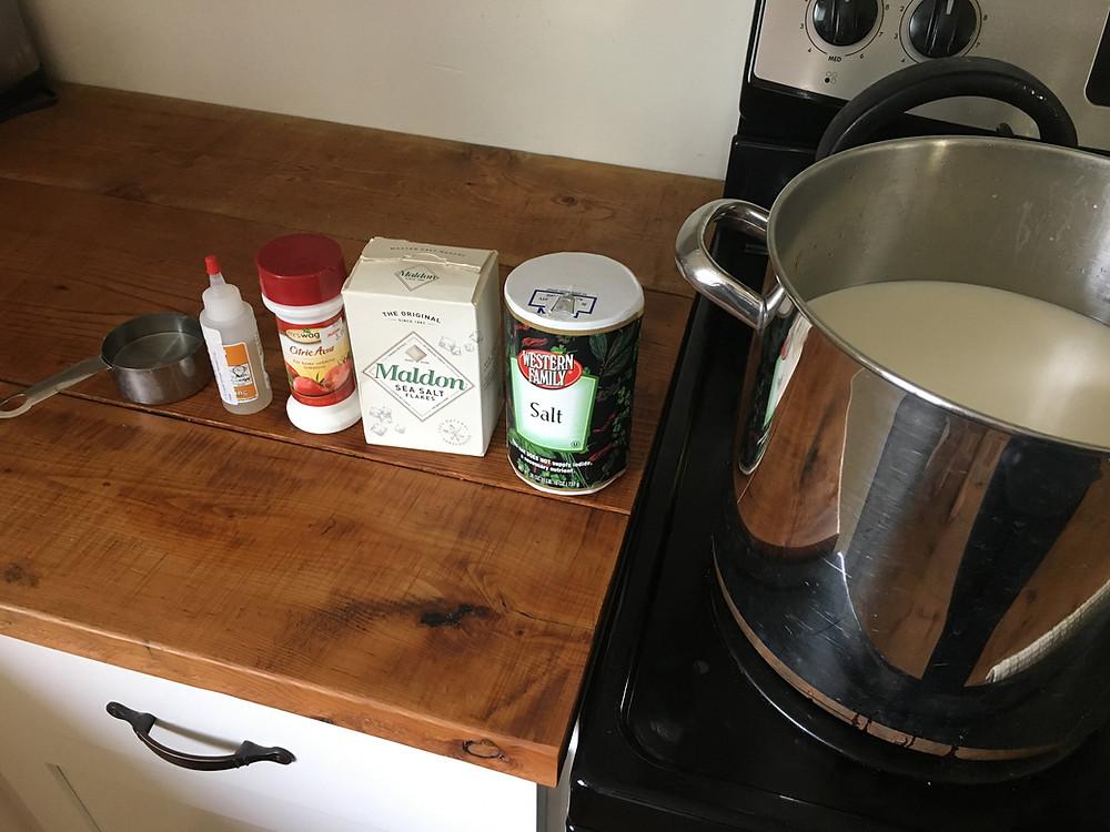 Easy goat milk mozzerella cheese