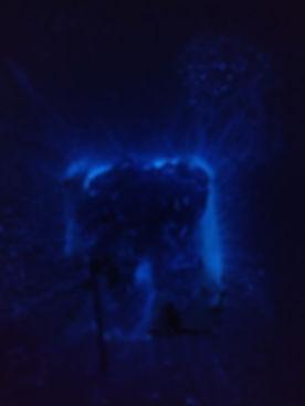 night stalker hunting spray.jpg