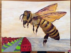 Honey Bee Apocolypse