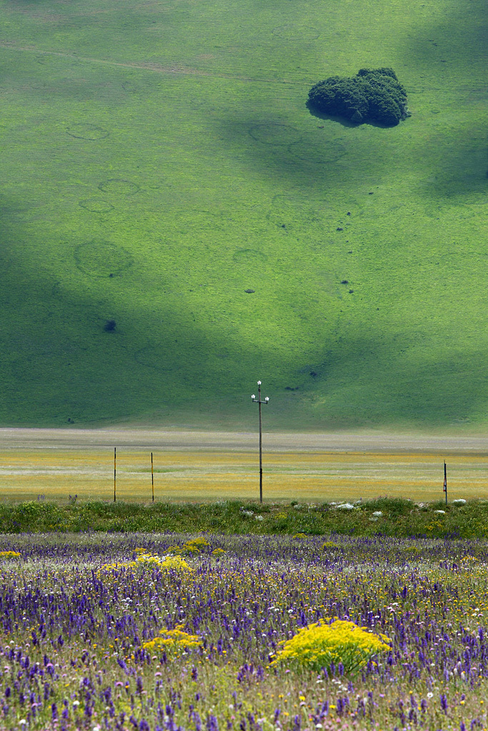 land+(16).jpg