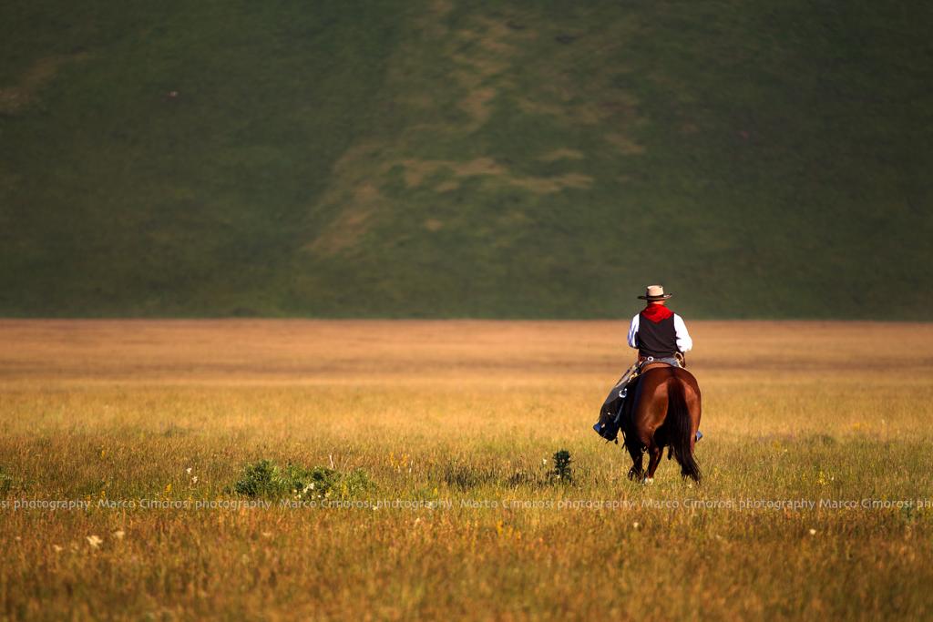 cowboy 2_74C0835