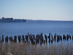 Old pilings - Thunder Bay Harbour