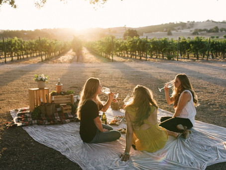 The Best Wine Tastings & Tours from San Luis Obispo / Pismo Beach