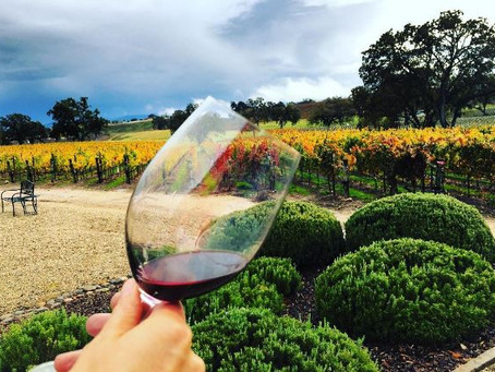 Uncorked Wine Tours is a family friendly fun time