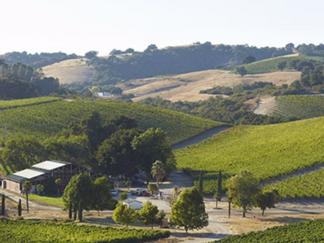2013 Wine Region of the year: Paso Robles