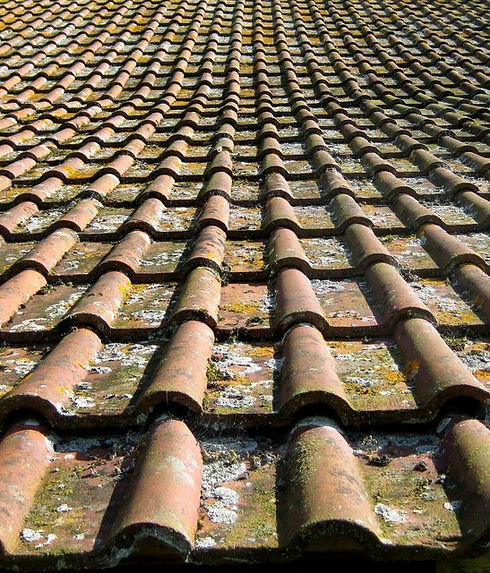 roof13.jpg