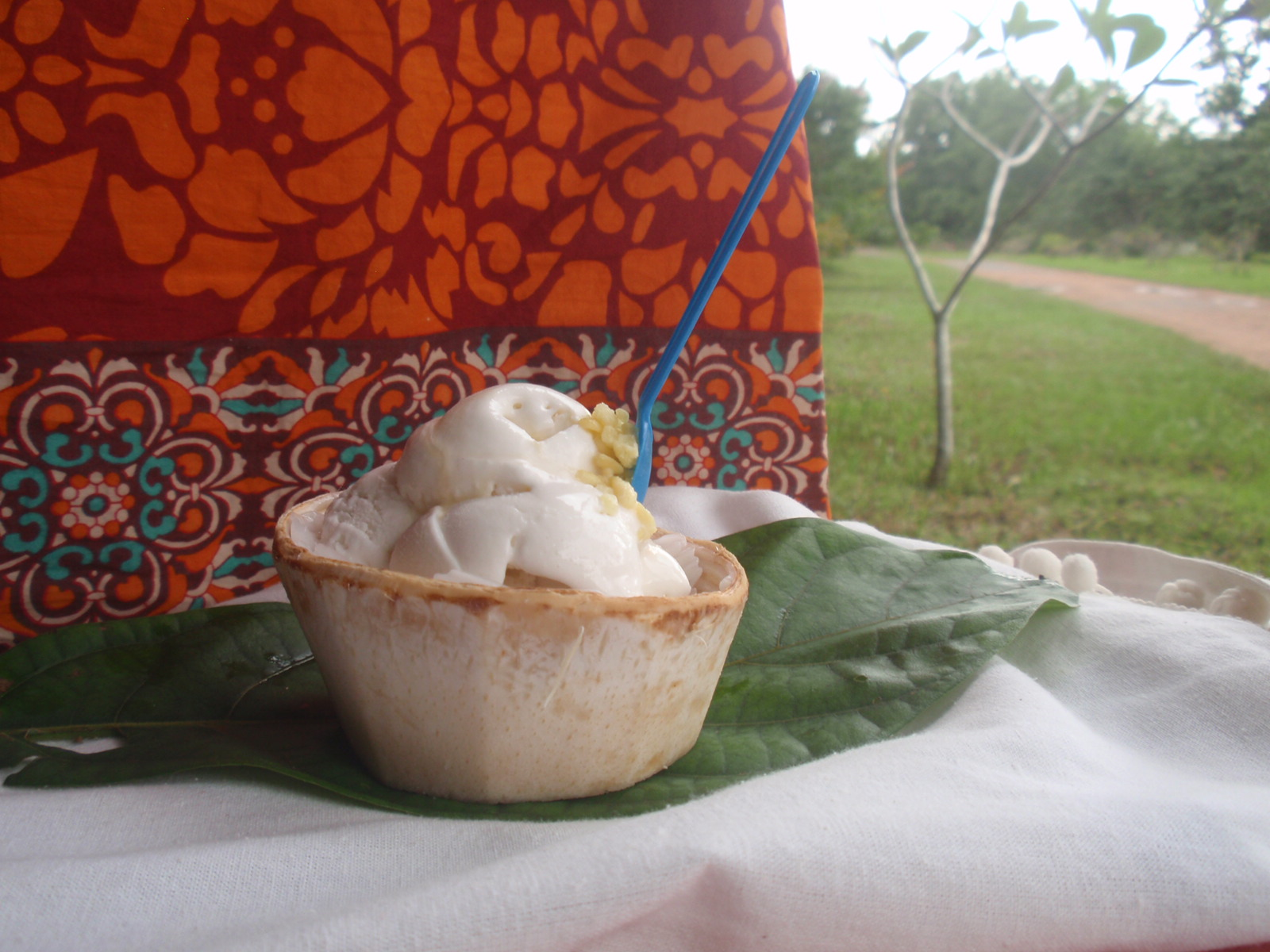 Coconut icecream