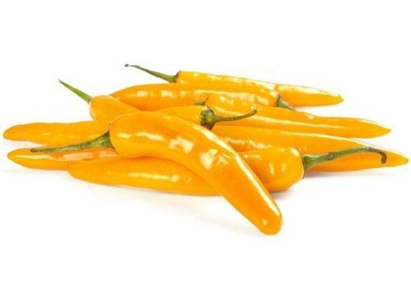 Chilli (Yellow)