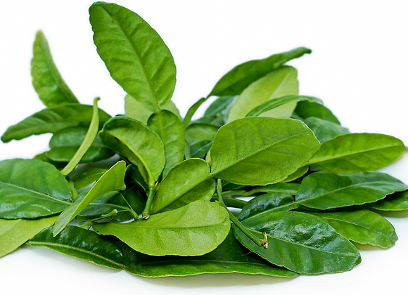 Kafir Leaves