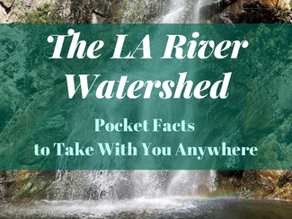 #SummerScienceFriday | LA River Watershed Pocket Facts (to Take With You Anywhere)!