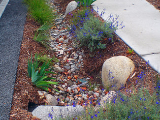 #SummerScienceFriday | How to be a better watershed steward - at home!