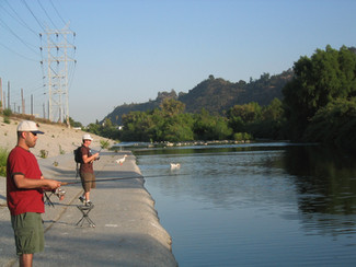 #SummerScienceFriday | There are FISH in the LA River?