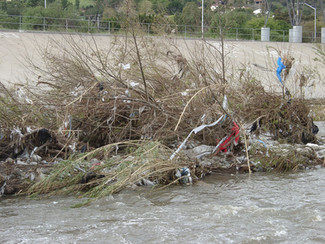 #SummerScienceFriday |  Reducing Your Trash Footprint