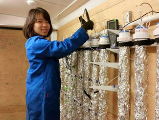 CWH Intern in the spotlight: Judy Lin, Water Quality Monitoring intern