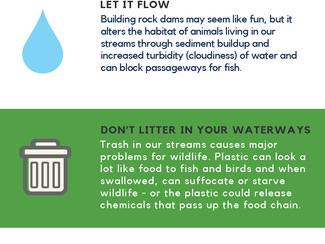 #SummerScienceFriday: How to become a better Water Steward